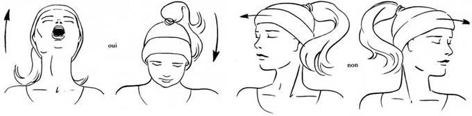 clip image014 Boyun Düzleşmesi Egzersizleri ve Hareketleri